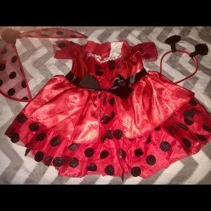 Ladybug Toddler Girls Costume - 2T - EUC🐞